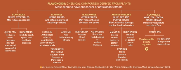 chemical-conpounds-derived-from-plants