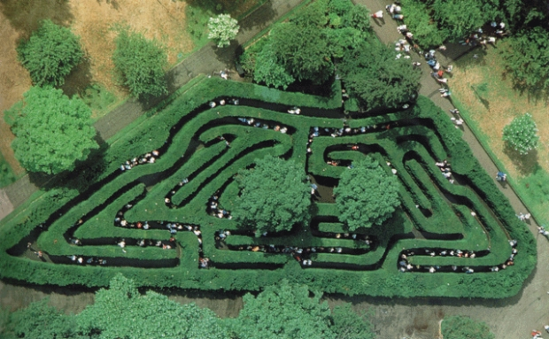 hampton-court-maze-aerial-view