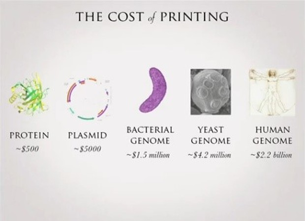 cost-of-dna-printing