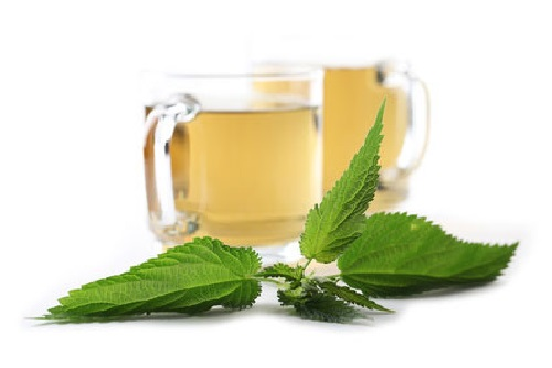 nettle-tea-and-extracts