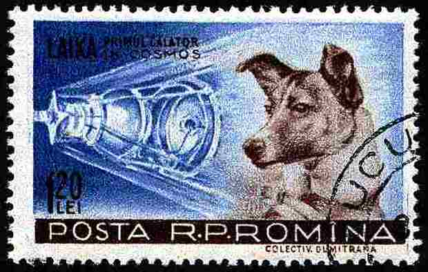 laika-space-dog-stamp